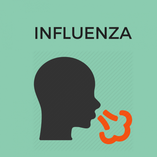 influenza-blog-flu-sehatpk-healthcare-at-your-doorstep-blog-sehat-com-pk