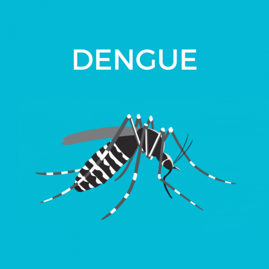 dengue-fever-sehatpk-online-pharmacy-pakistan-blog-health-care-atyour-doorstep-dengue-fever